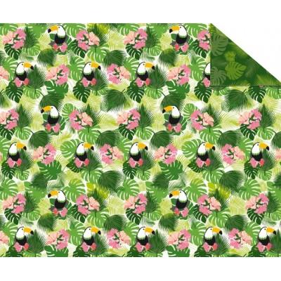 Cartones Doble Cara (49,5 x 68 cm) Tropical
